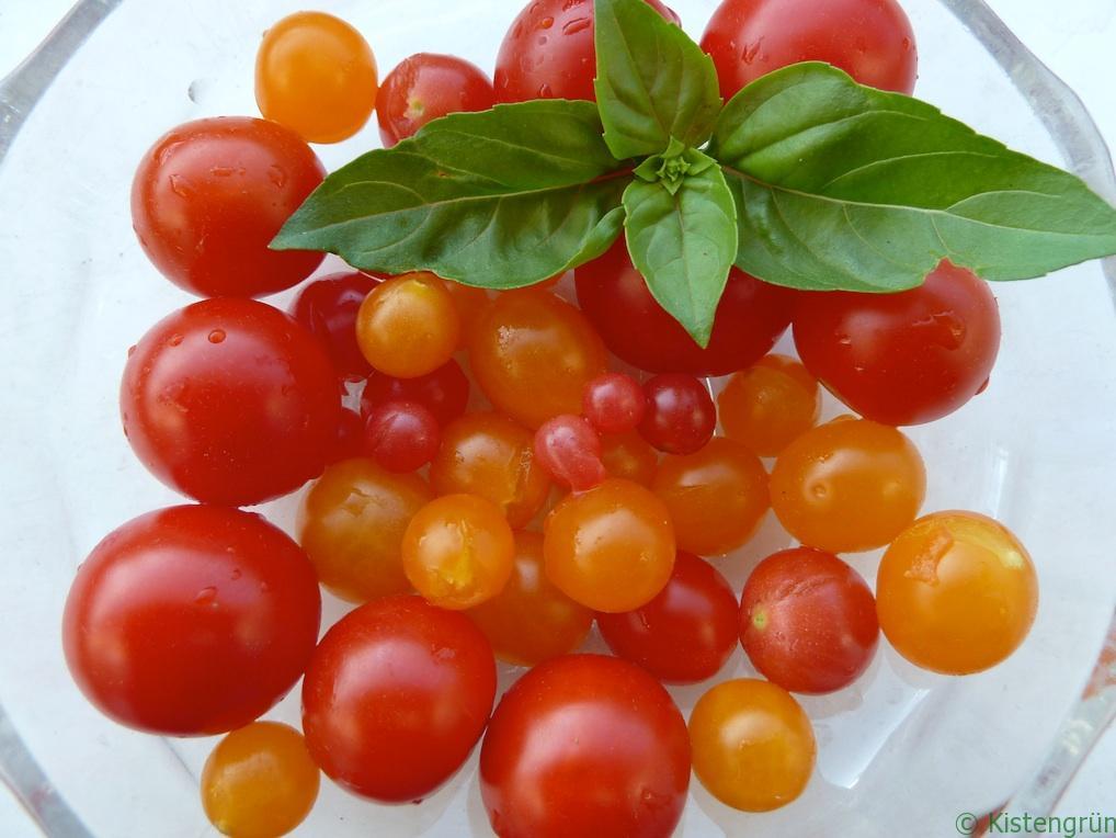 Der Klassiker: Tomate und Basilikum.