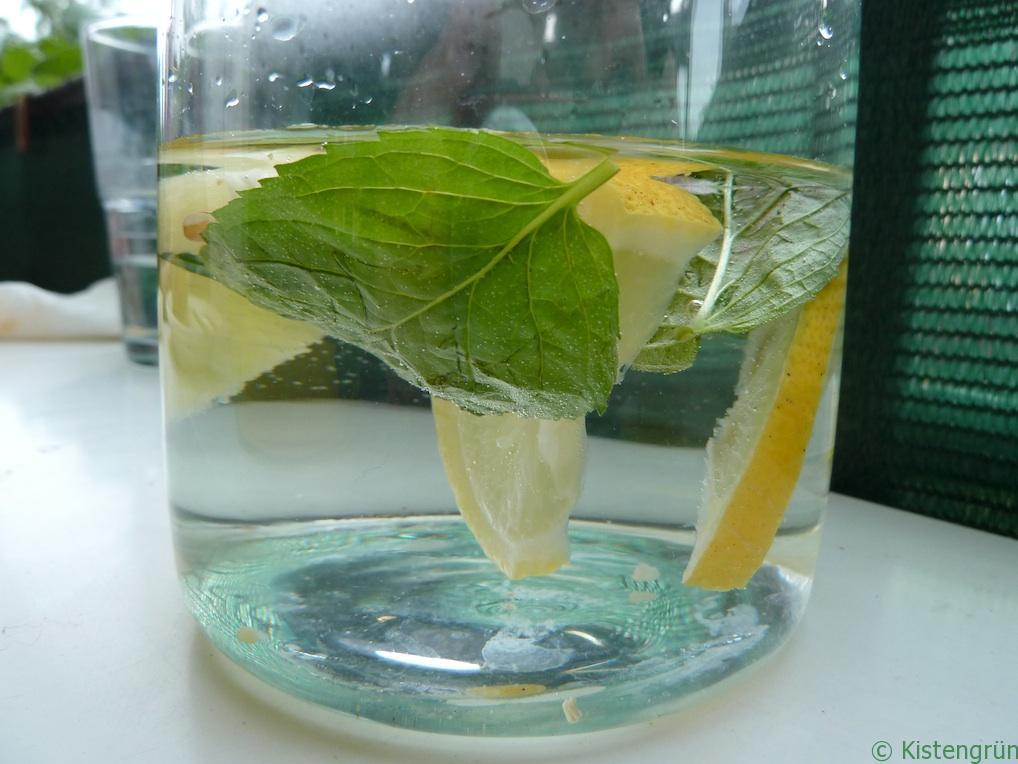 Herrlich erfrischend an heißen Tagen: Zitronenwasser mit Minze.